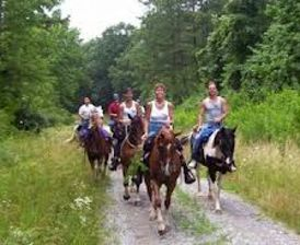 Horse Ride Tours